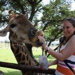 Joanesburgo: turismo, hospedagem e dicas de local