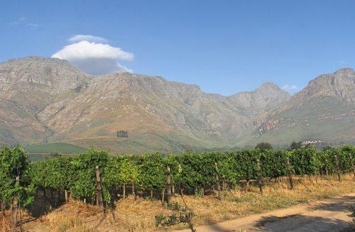 3 melhores vinícolas em Paarl