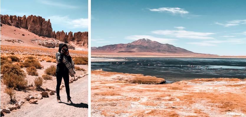 Salar_de_Tara_Deserto_Atacama