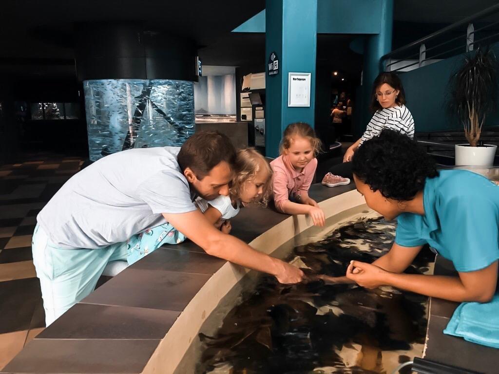 Pai e filha no aquário de cape town