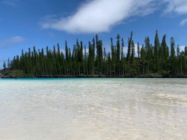 Ilha dos Pinhos na Nova Caledônia