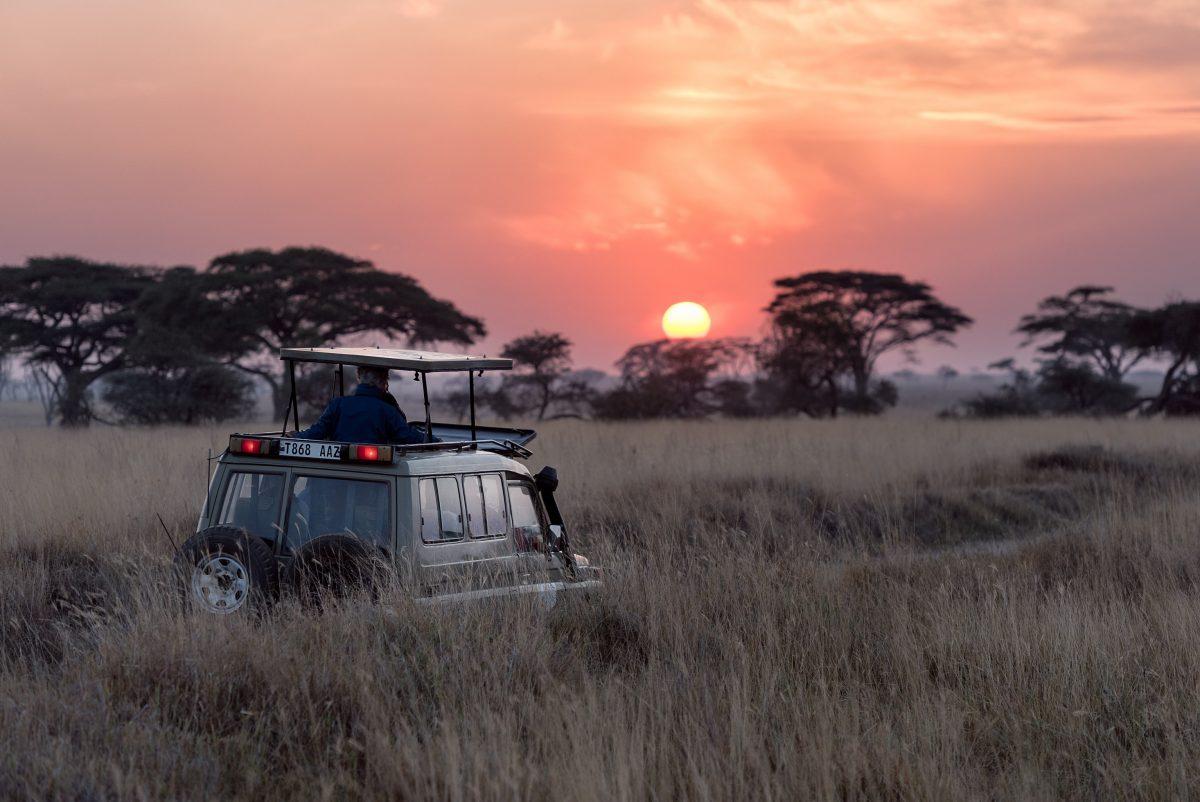 Safari barato na África do Sul